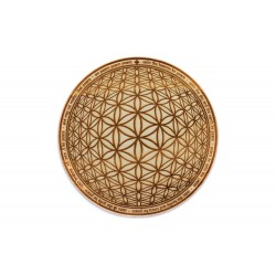 Shanti Mantra - Flower of Life
